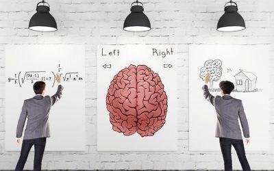 """Translation Problem"", neuroscienze e fenomenologia"